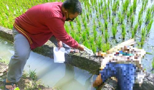 Tragis, Nenek di Tuban Tewas Tersengat Listrik Jebakan Tikus