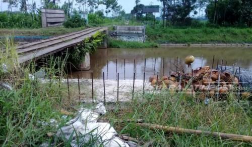 PG Jatiroto Tolak Pembangunan Jembatan Menuju Lahan Tebu