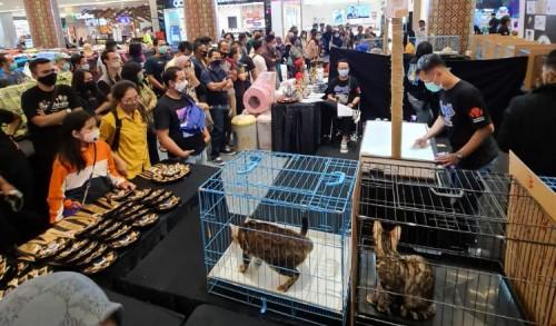 Ratusan Peserta Meriahkan Gresik Cat And Reptile Supershow