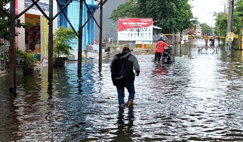 Banjir Tambak Beras Cerme Gresik Masih Parah, Jalan Poros Desa Ditutup