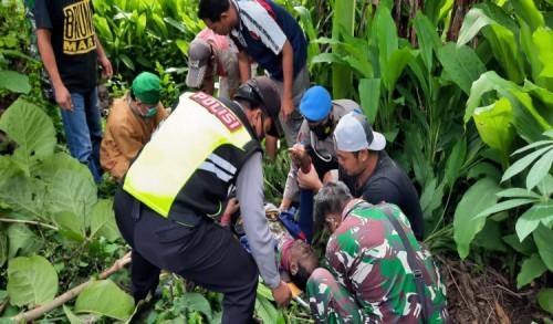 Apes, Pemotong Ranting Kayu di Ponorogo Meninggal Tersengat Listrik