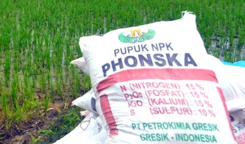 Harga Pupuk Subsidi Naik, Petani Semakin Menjerit