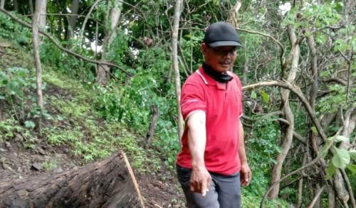 Polisi Tangkap Dua Pelaku Ilegal Loging di Ponorogo