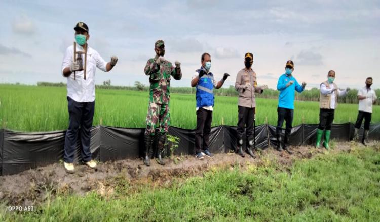 Forpimda Ngawi Gugur Gunung Basmi Tikus Dengan Cara Gropyokan