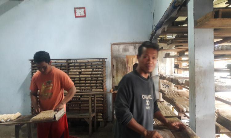 Produsen Tempe di Purworejo, Keluhkan Harga Kedelai Naik