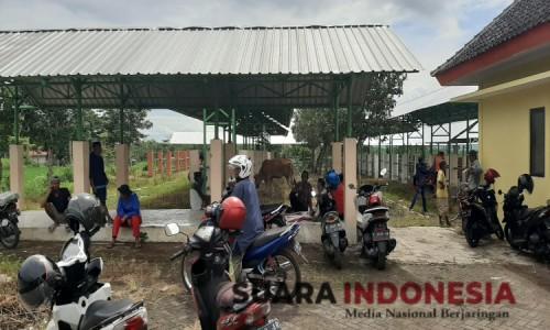 Uji Coba Pasar Hewan Terpadu Bondowoso, Pedagang Sebut Tempatnya Masih Kurang Layak