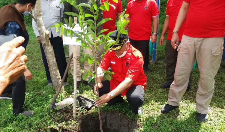 HUT ke-48, DPC PDI Perjuangan Kabupaten Malang Tanam Pohon di Rawa Klampok