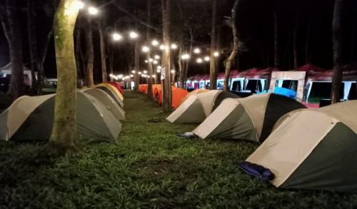 Wisata Hutan Pinus Songgon Banyuwangi, Rekomendasi Tempat Camping untuk Akhir Pekan