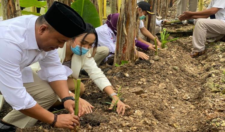 Peringati HUT ke-13, DPC Gerindra Bojonegoro Launching Program Menanam
