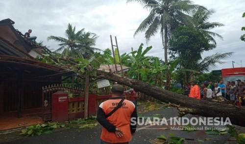Akibat Hujan Deras dan Angin Kencang, Sejumlah Rumah di Purworejo Rusak Parah