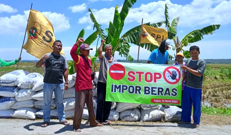 Tolak Impor 1 Juta Ton Beras, Petani Tuban Siap Suplay Beras Nasional