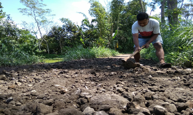 Warga Desa Kambang di Bondowoso Terpaksa Perbaikan Jalan Rusak Gunakan Dana Swadaya