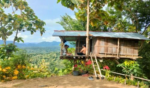 Exsplore Keindahan Bukit Menoreh dari Rumah Pohon Secangklik Purworejo