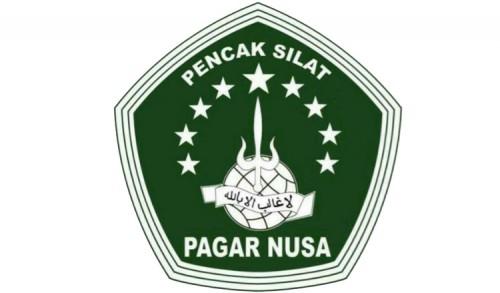 Insiden Bangsalsari, Ketua Cabang Pagar Nusa Jember Angkat Bicara
