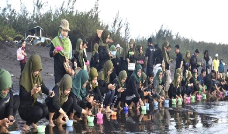 Pesona Pantai Cemara Banyuwangi, Spot Foto Instagramable Sembari Melepas Tukik, Penasaran?