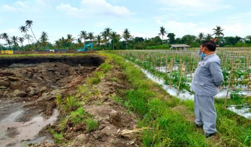 Dinas Pertanian Banyuwangi Akui Ada Praktik Galian C di Lahan Produktif