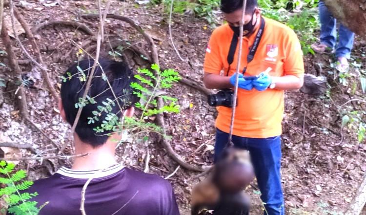 Mayat Tanpa Identitas Tergantung Diakar Pohon Dalam Kondisi Mengering, Gegerkan Warga Widang Tuban
