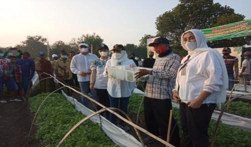 Dukung Para Petani Tembakau, Pemkab Bojonegoro Berikan Ini