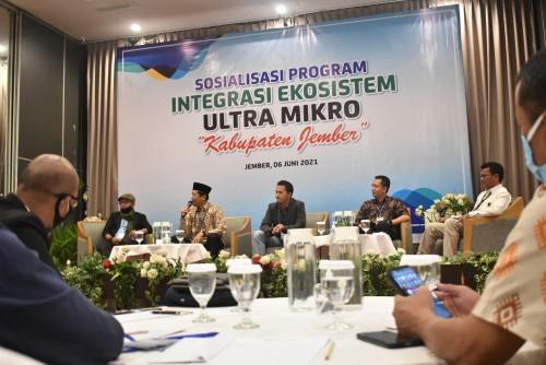 Sosialisasi Program Integrasi Ekosistem Ultra Mikro