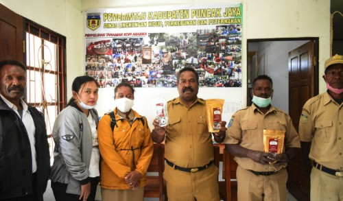 Jelang Pon Papua, Pemda Puncak Jaya Target Produksi 800 Kg Kopi Siap Saji