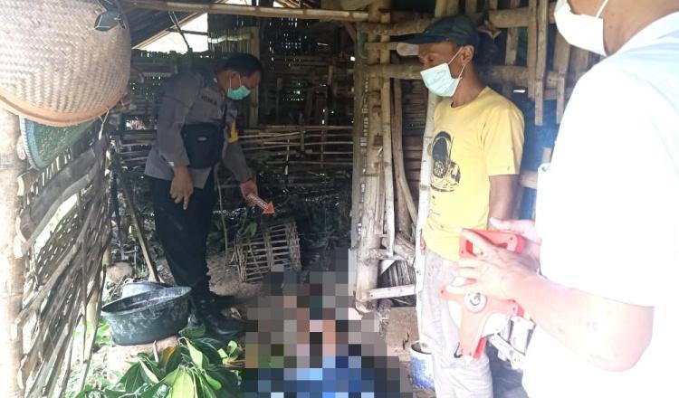 Sakit Asma, Pria Asal Ponorogo Gantung Diri di Kandang Kambing