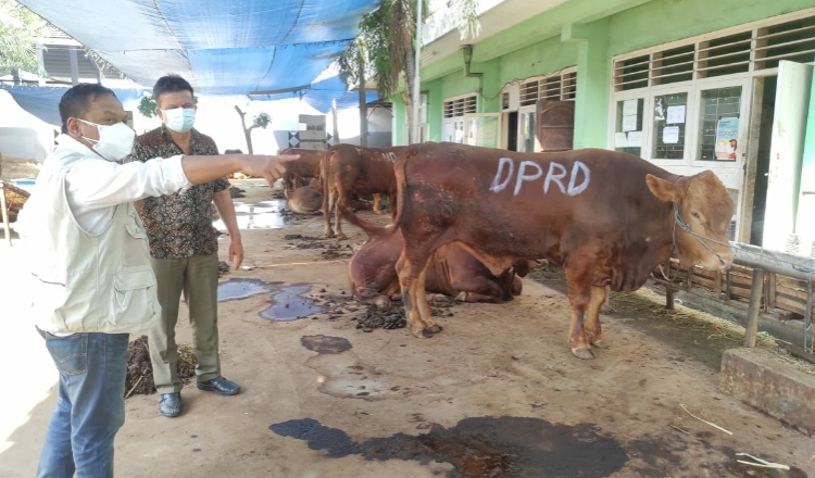 Jelang Idul Adha, Dewan Tinjau Persiapan PD RPH Surabaya