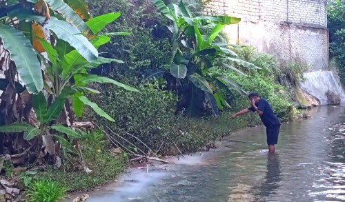 Diduga Cemari Sungai Kawasan Pemandian Bektiharjo, Pabrik Es di Tuban Diprotes Warga