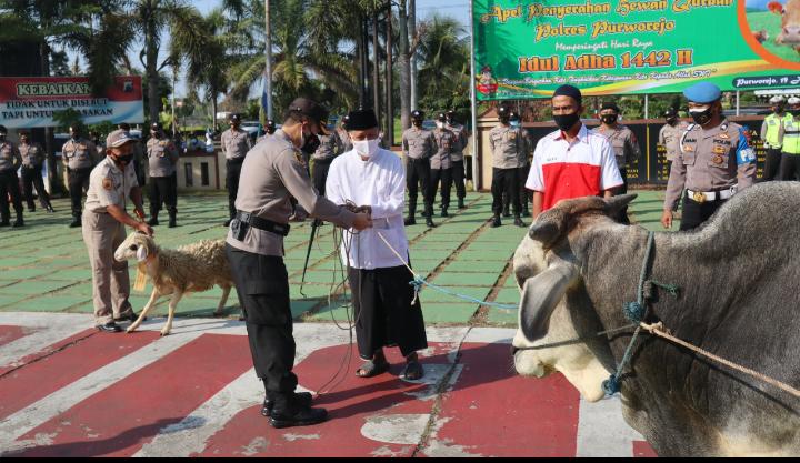 Idul Adha, Polres Purworejo Bagikan 19 Hewan Kurban ke Masjid dan Musala