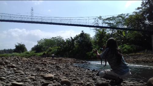 Terpanjang di Purworejo, Jembatan Semapop Jadi Ajang Selfi
