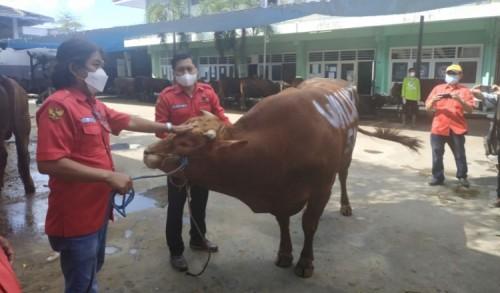 PDIP Surabaya Bersyukur Masih Bisa Berkurban di Tengah Pandemi Covid-19