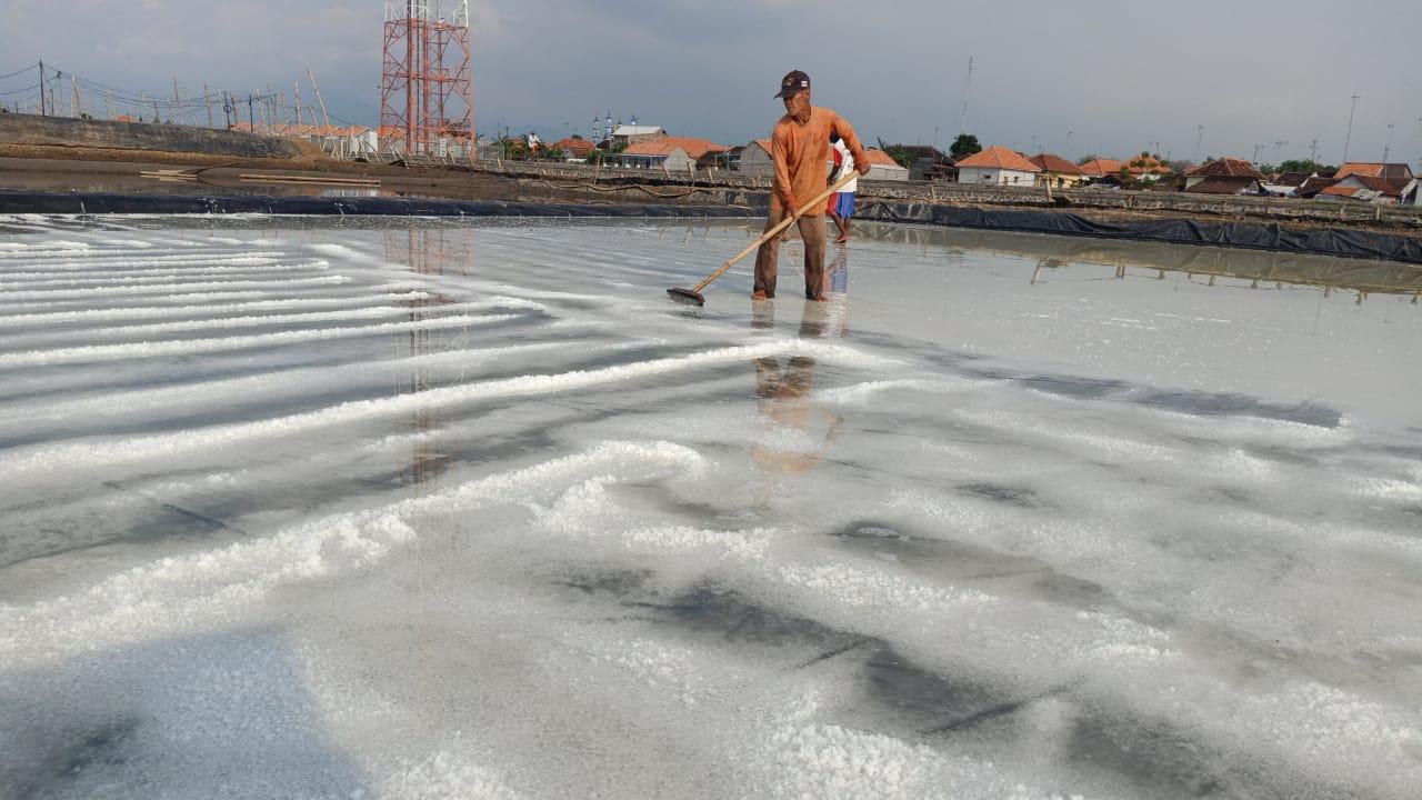 Suramadu Disekat, Harga Garam di Probolinggo Melonjak
