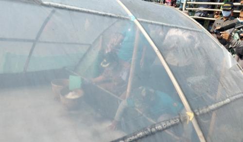 Warga Purworejo Manfaatkan Tambak Udang Untuk Usaha Produksi Garam Organik