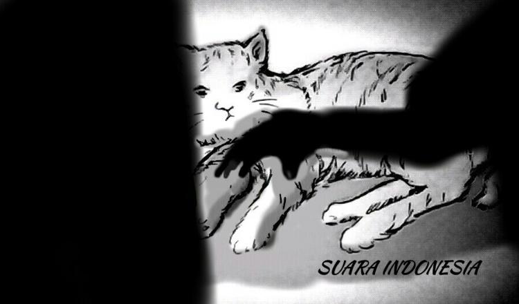Curi Kucing Persia, Dijual Online, 2 Warga Cinere Diciduk