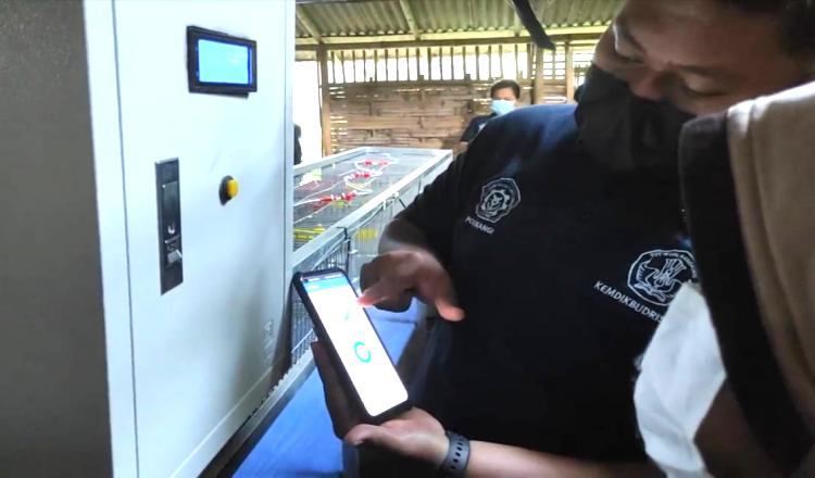 Kandang Puyuh Berbasis IoT Permudah Peternak di Banyuwangi, Bisa Pantau Cukup Lewat HP