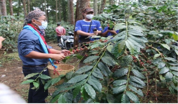 PT Astra Lewat Unej Beri Bantuan Petani Kopi Terdampak Covid-19, Sambil Sosialisasi Prokes