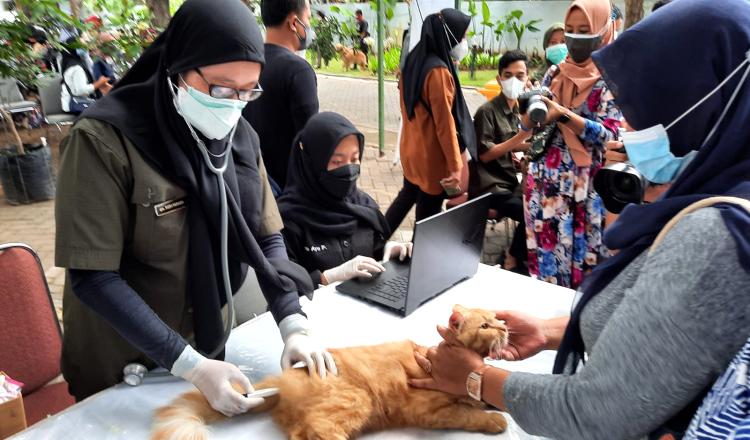 Banyuwangi Genjot Program Vaksinasi Rabies untuk Hewan Peliharaan