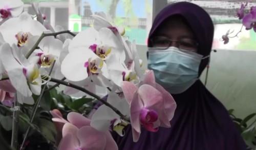 Berawal dari Hobi, Seorang ASN di Madiun Sukses Budidaya Bunga Anggrek