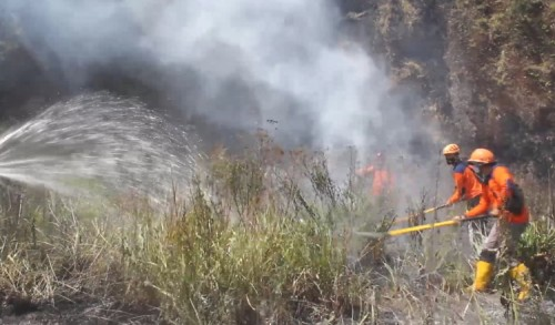 Kawasan Konservasi Bromo Terbakar, TNBTS Duga Ada Unsur Kesengajaan
