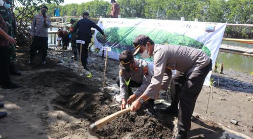 Jaga Kelestarian Alam Pantai, Polres Purworejo Tanam Pohon Mangrove di Pesisir Pantai